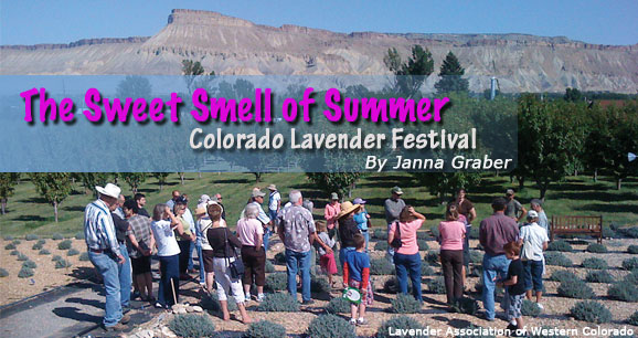 The Sweet Smell of Summer: Colorado Lavender Festival 2